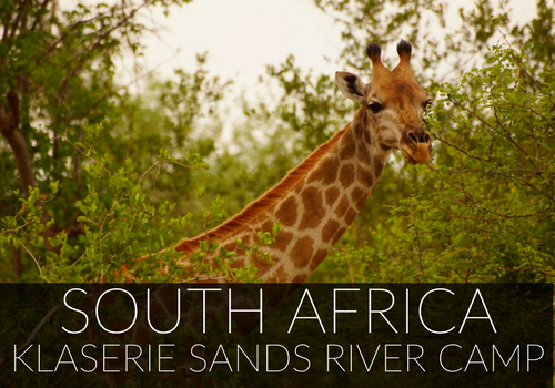South Africa Klaserie Sands River Camp